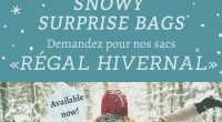 "The Timmins Public Library is offering new ""Snowy Surprise Bags"" for adults, each featuring two wintery books. Themes include ""Icy Apocalypse,"" ""Arctic Adventurers,"" ""Hockey Stories"" and ""Polar Bear Tales."" Come […]"