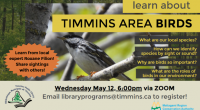 Learn About Timmins Area Birds Birds bring colour and music to our world during all seasons, especially in the springtime. – What species can we see around the Timmins area? […]